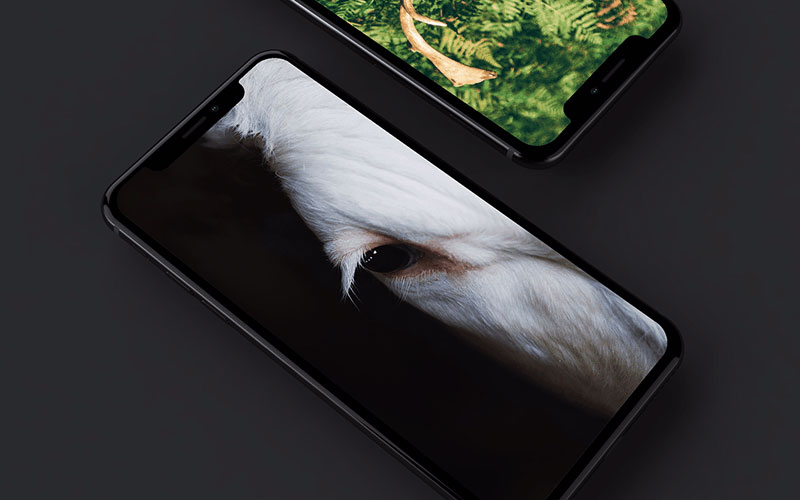 iPhone-X-Mockup-Dark