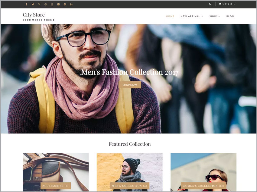City-Store-Free-WP-Ecommerce-Theme