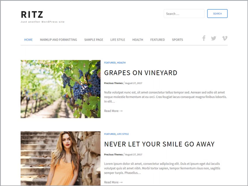 Ritz-Beautiful-Ecommerce-WP-Theme