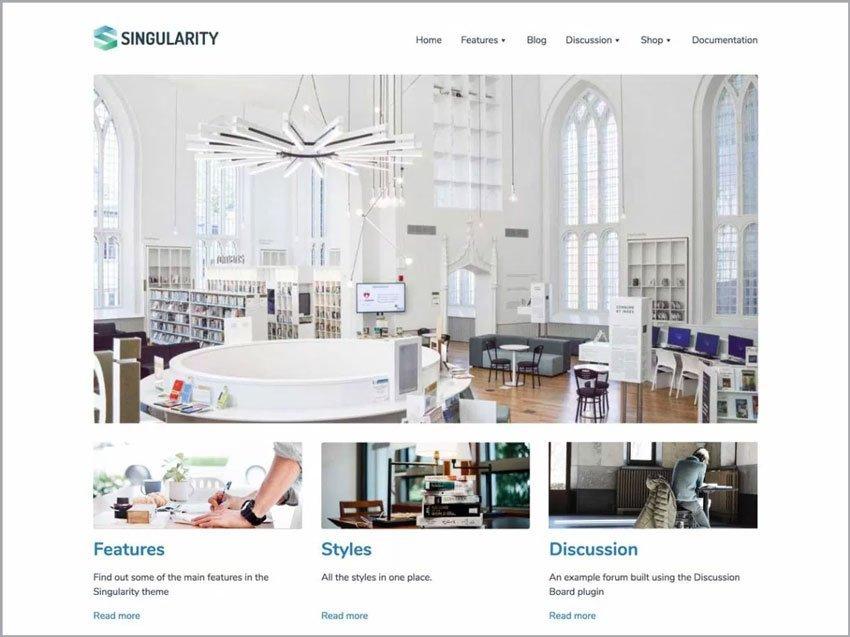 Singularity-Free-Ecommerce-WP-Theme