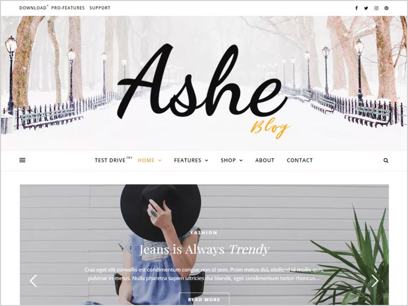 Ashe-Free-WP-Theme