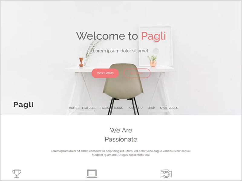 pagli-Free-WP-Theme