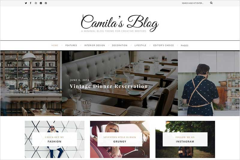 Camila---WordPress-Blog-Theme