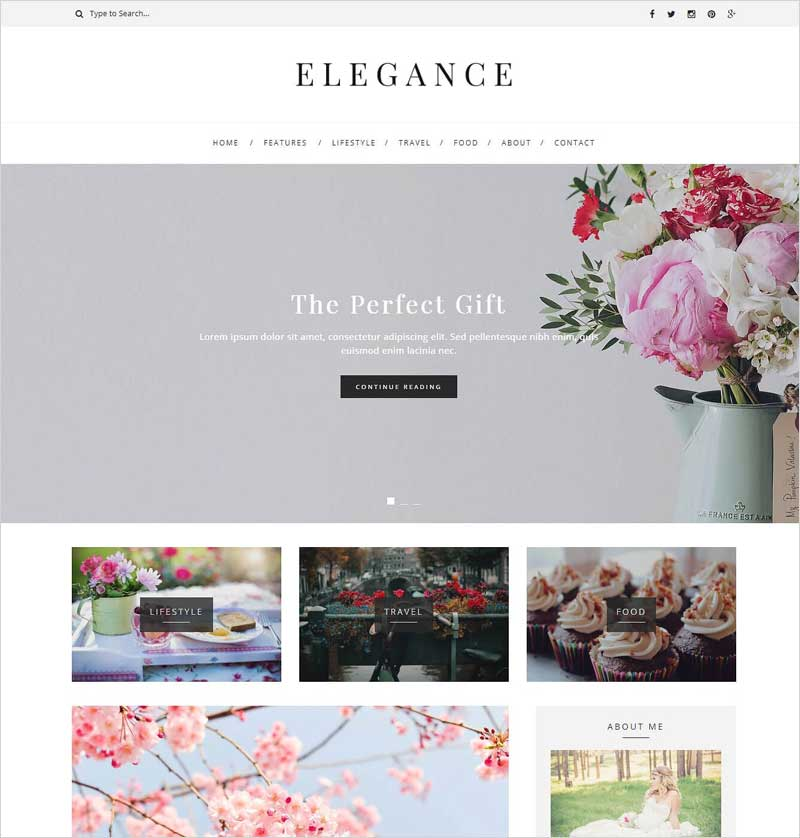 Elegance---WordPress-Blog-Theme