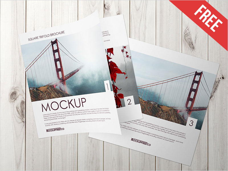 Square-Trifold-Brochure-–-2-Free-PSD-Mockups