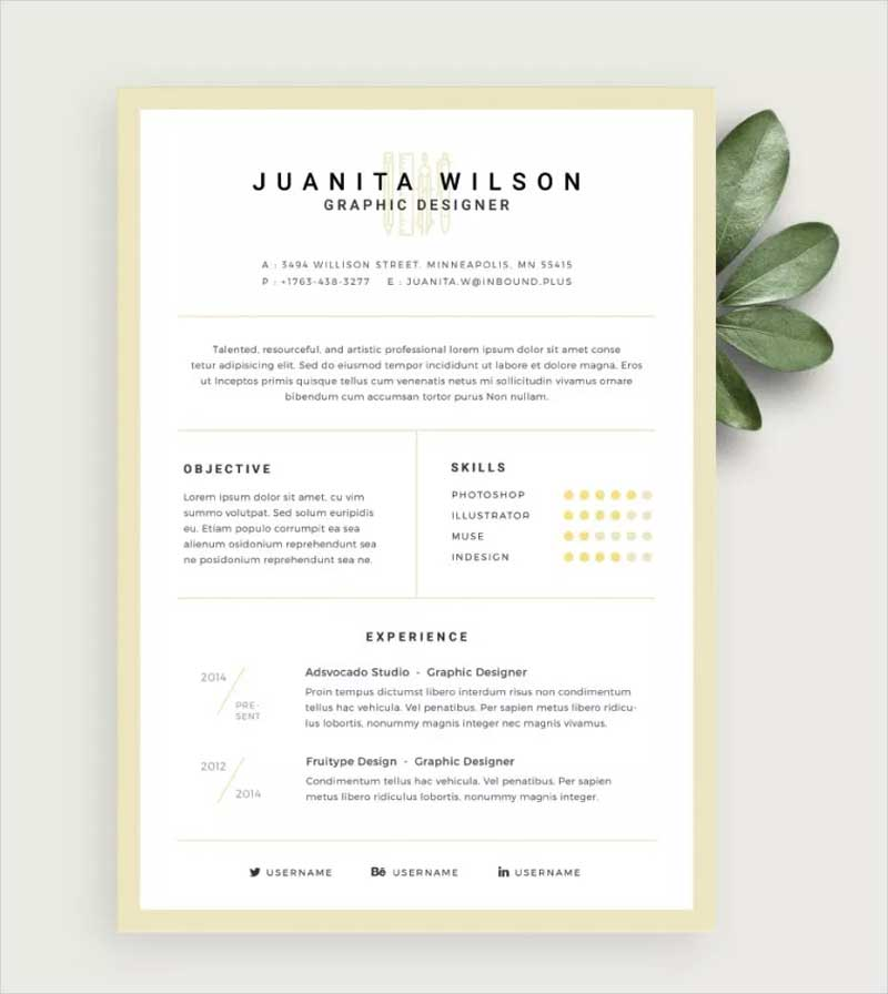 Clean-Resume-Template2