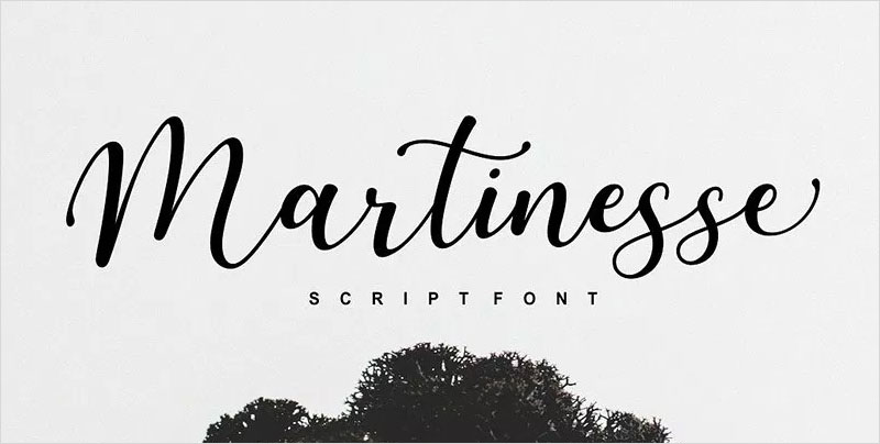 Free-Martinesse-Beautiful-Script-Demo-For-Designers