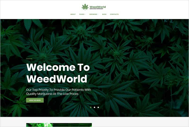 Medical-Marijuana-Dispensary-Theme