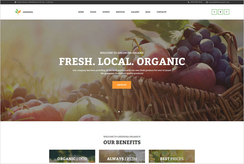 Organic-Farming-WordPress-Theme1