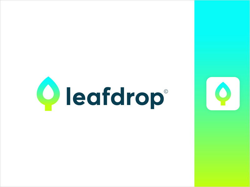 Leaf-+-Drop-Logo-Concept