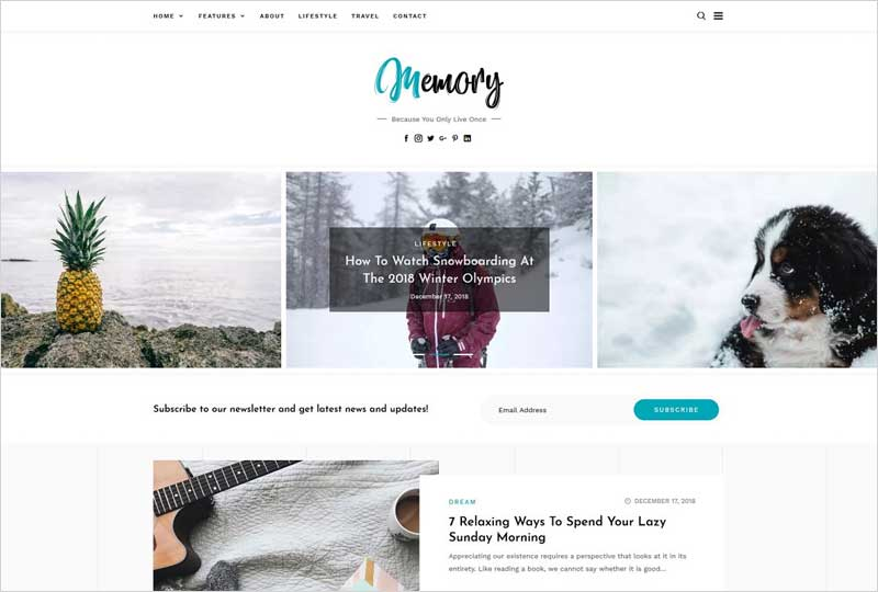 Memory---WordPress-Blog-Theme