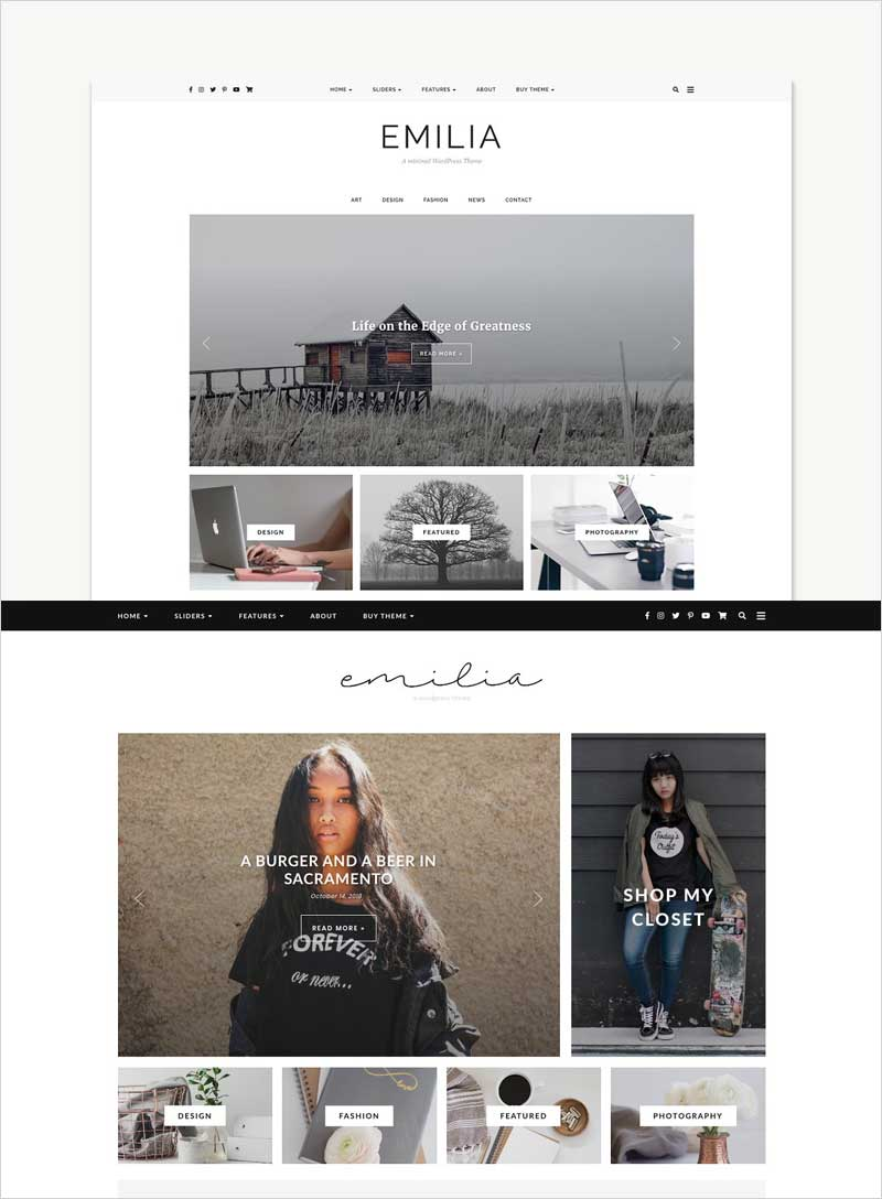 WordPress-Theme,-Responsive,-Emilia