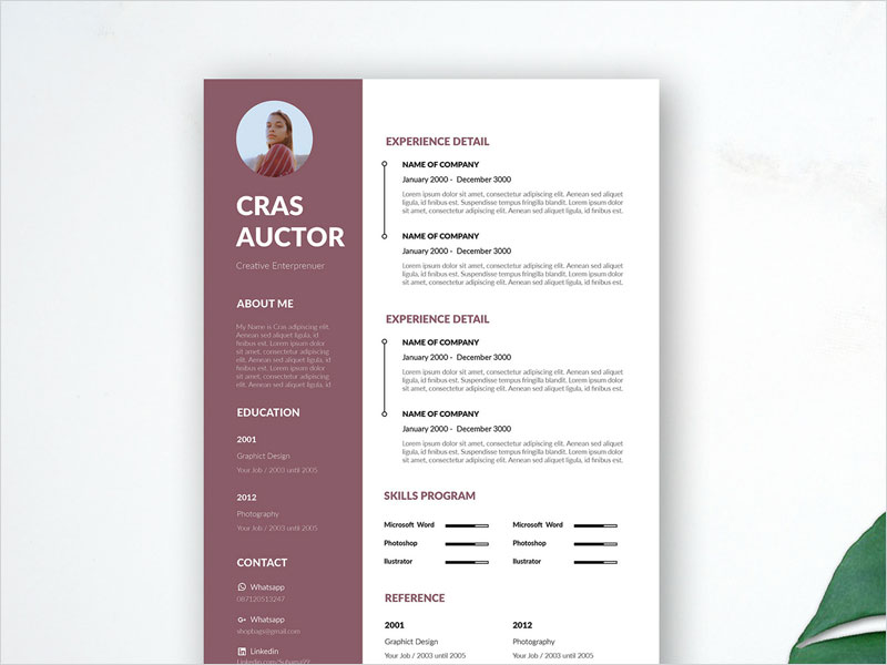 Free-Editable-Resume-Template