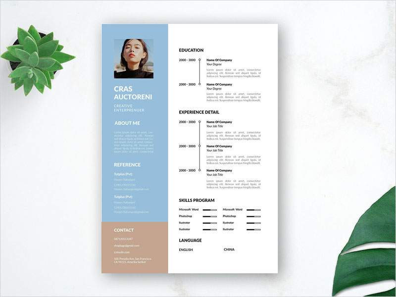 Free-Flat-Timeline-CV-Template