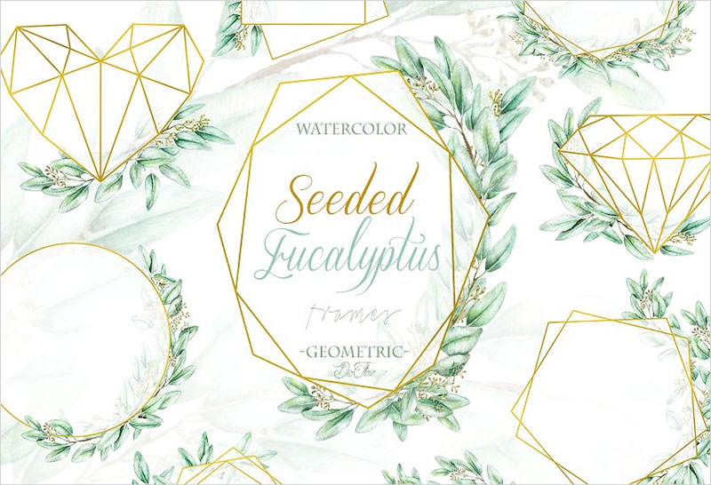 Seeded-Eucalyptus-Geometric-Frames