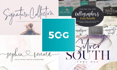 Premium-50-Script-Fonts-Collection-for-Creative-Artists