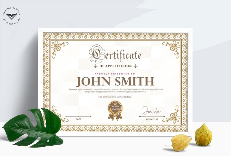 Professional-Certificate-Template