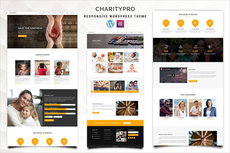 Charitypro-–-Charity-WordPress-Theme