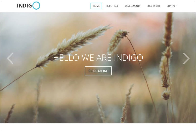 Indigo---Multi-Purpose-Theme