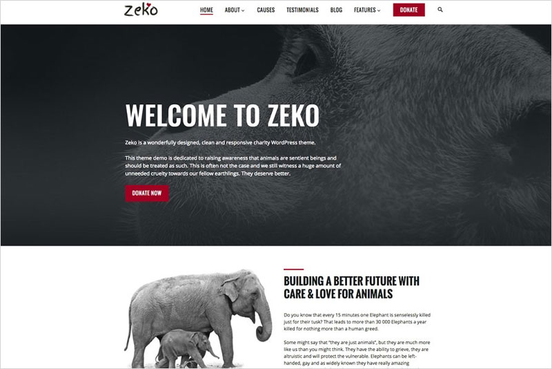 Zeko---Non-Profit-WordPress-Theme