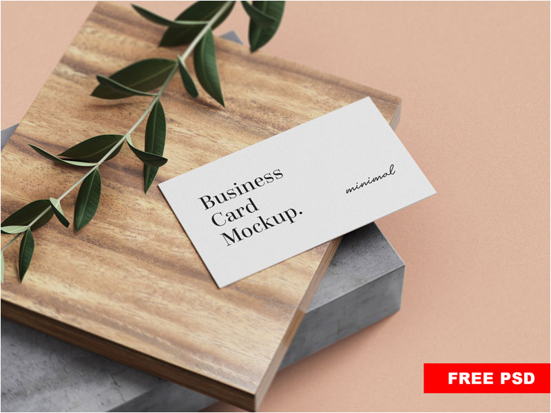 Free-minimal-business-card-mockup